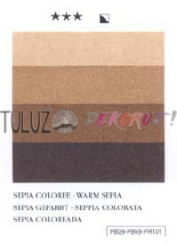 498 Warm Sepia Charbonnel 200 ml